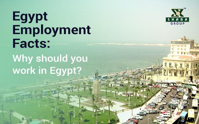 Egypt Employment Facts
