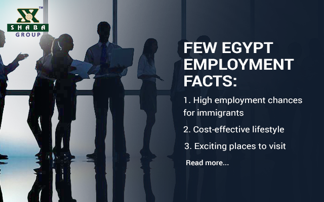 Benefits of Working in Egypt